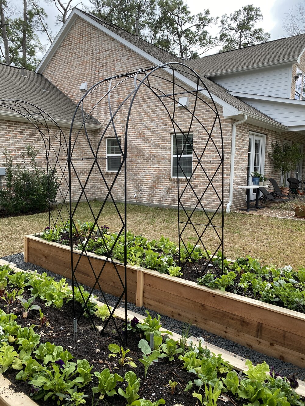 Raised Garden Bed Installation in Houston Texas — Rooted Garden