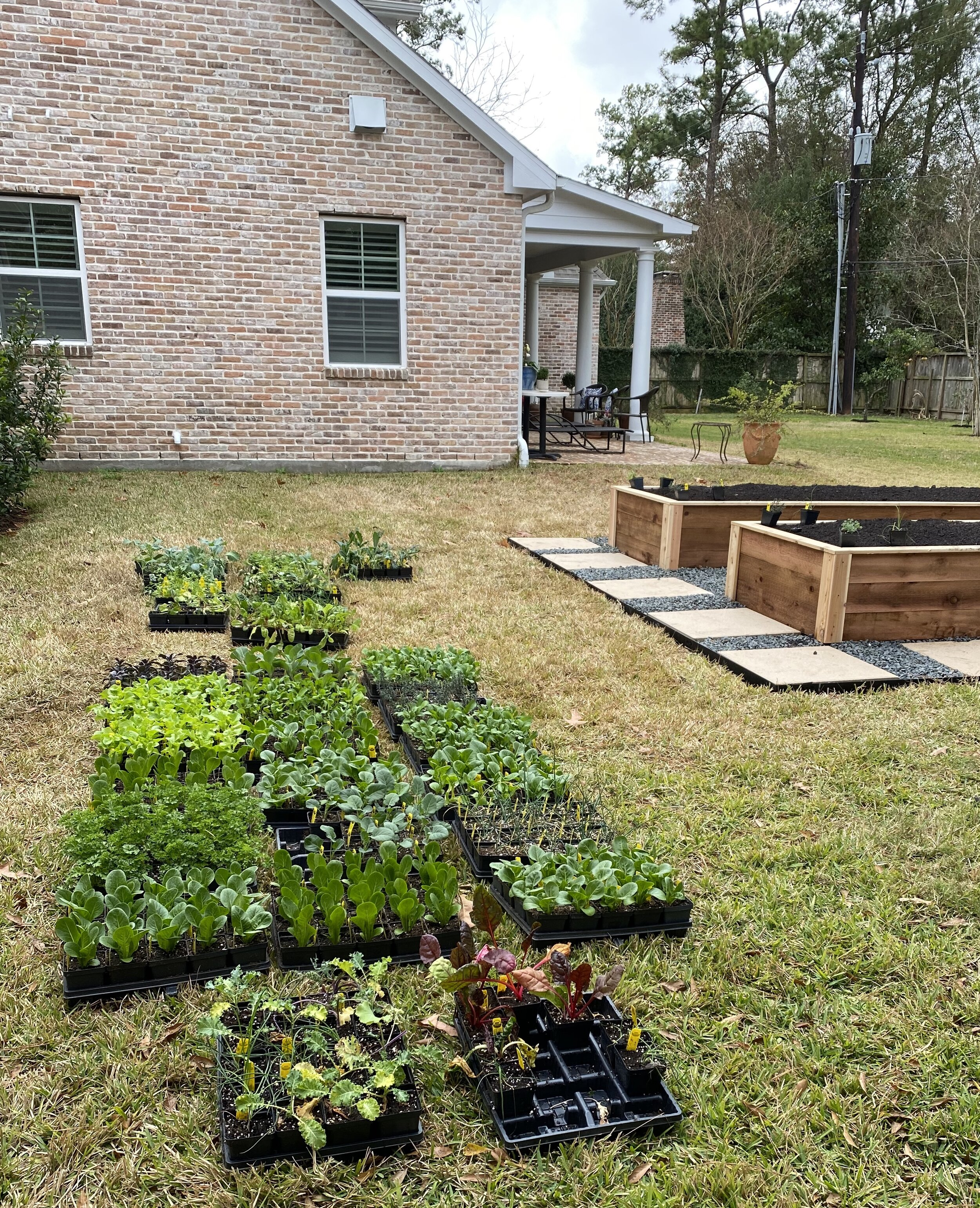 Raised Garden Bed Installation In Houston Texas Rooted Garden