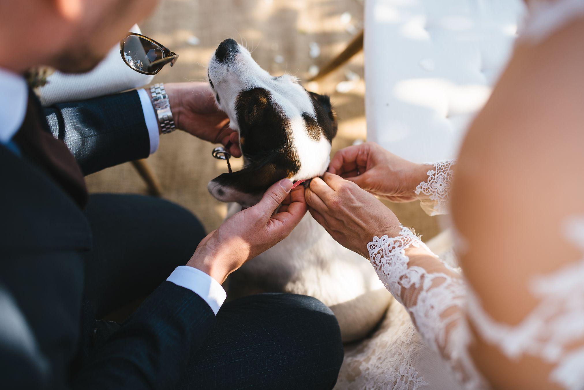 Hochzeit-Loisium-40.jpg