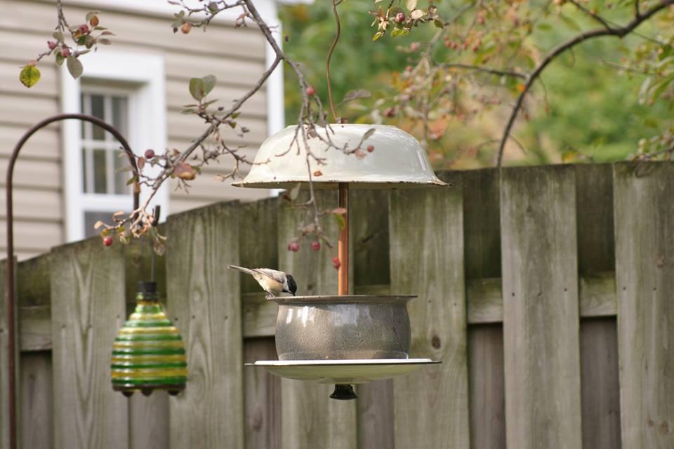 one Little Bird creations 2.jpg