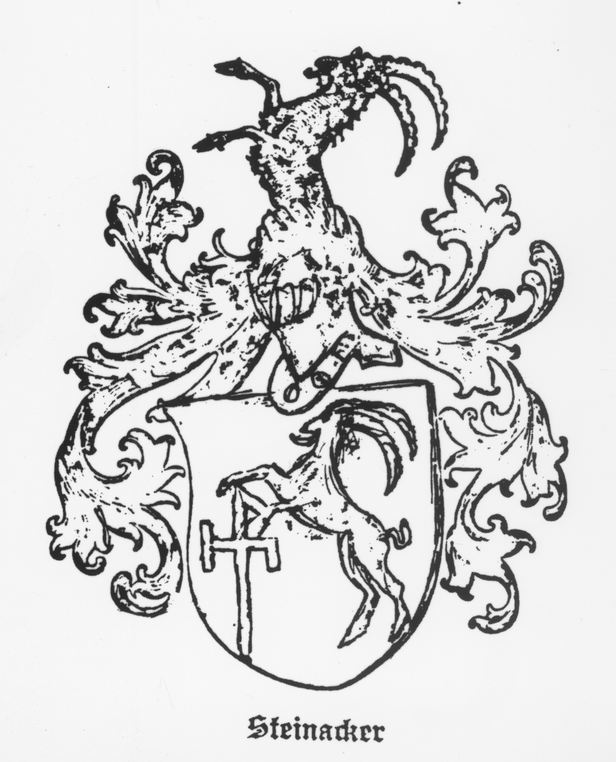 Steinacker, from a city of Quedlinburg in the Province of Lower Saxony. The coat of arms dated 1606. The family was Evangelical Lutheran, with seats in Brunswick, Holzminden, in Sangershausm in the Province of Thuringia, in Ilsfeld in Vienna, in Klosterneuberg near Vienna, in Innsbruck, in Kaltenstein near Hungarian Altenburg, in Funfkirchen and in Fiume in Hungary.