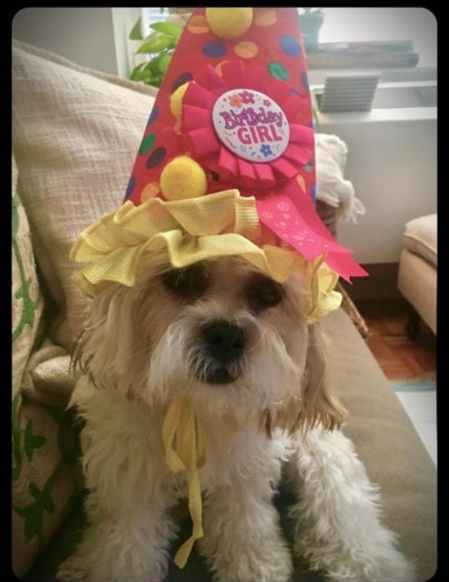 Dakota birthday 1.jpg