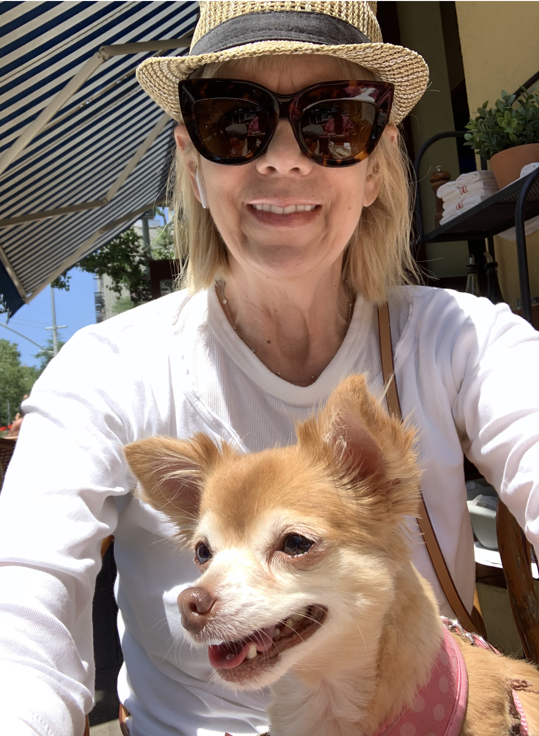 Woof rescue, Pippy, enjoys a day out with Shari!