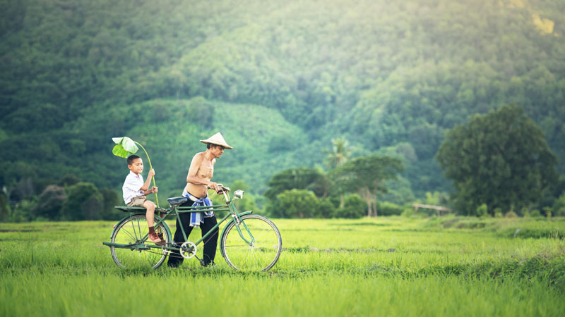 Cycling-in-Vietnam-father-and-son-rice-paddies-Shutterstock.jpg