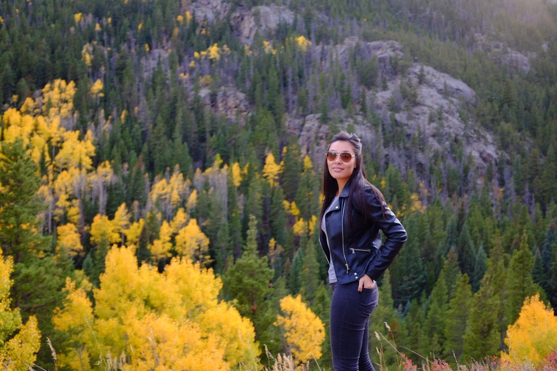 Fall foliage in colorado - November 2nd, 2016