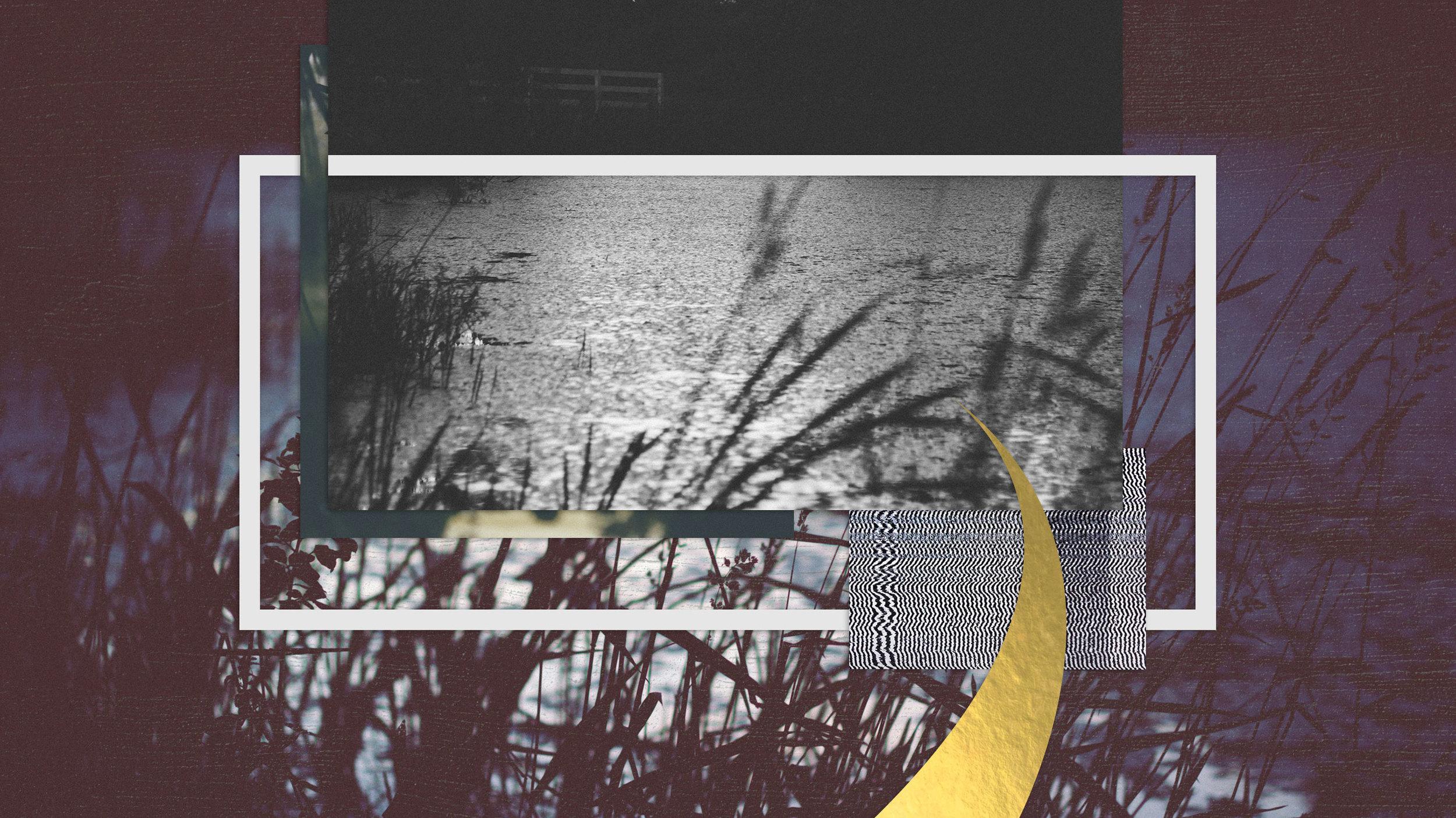 wallpaper_novmberswamp_2560x1440.jpg