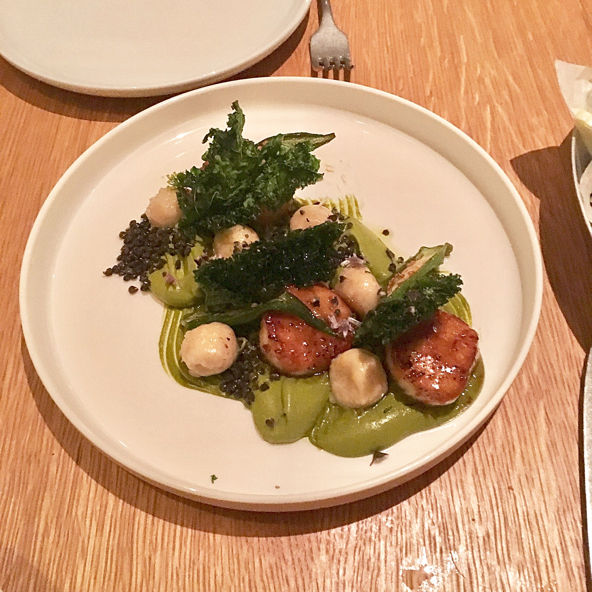 white & green scallops // seared scallops, ricotta gnudi, sorrel cumin cream, pine nuts
