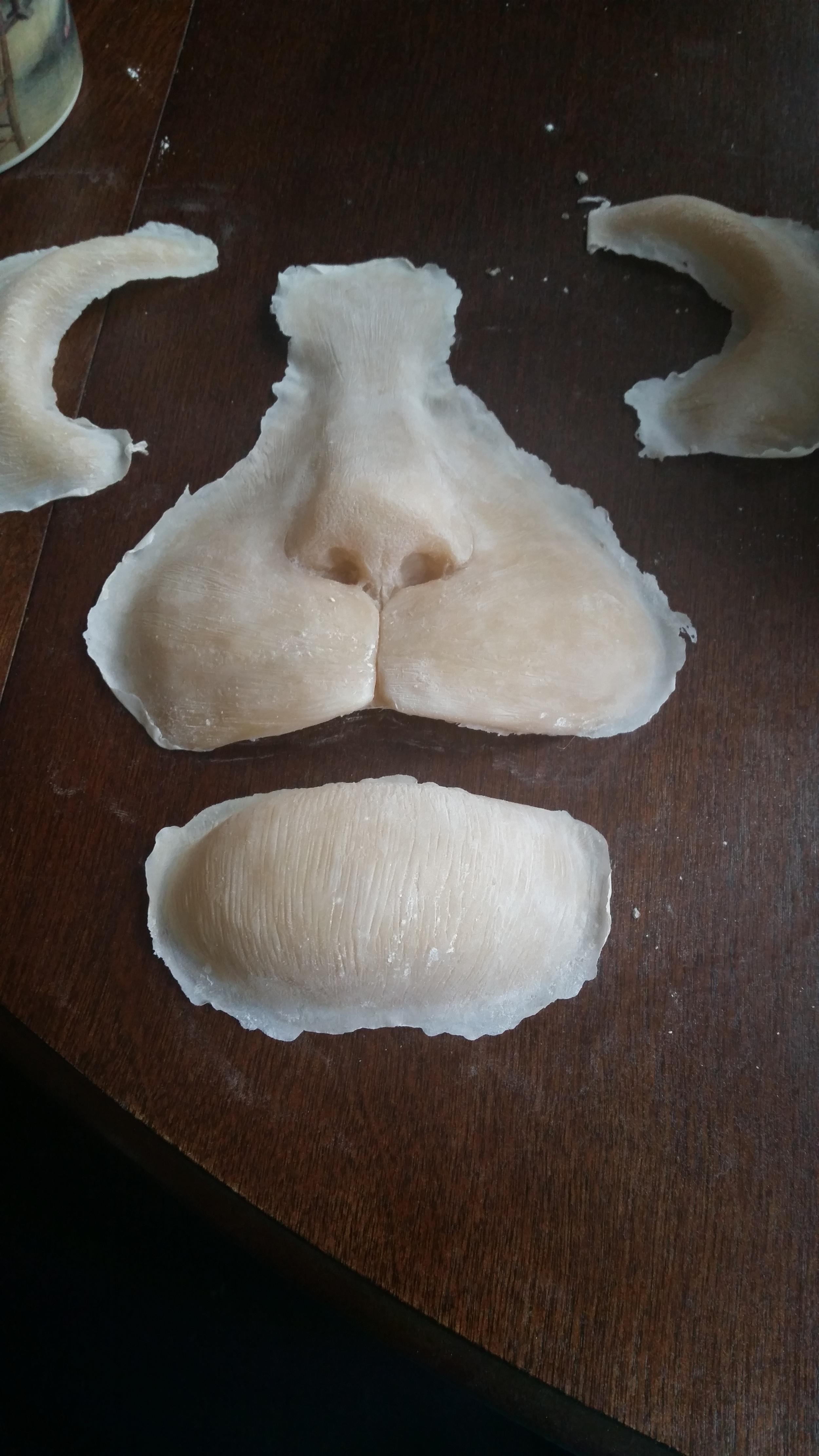 preliminary prosthetics
