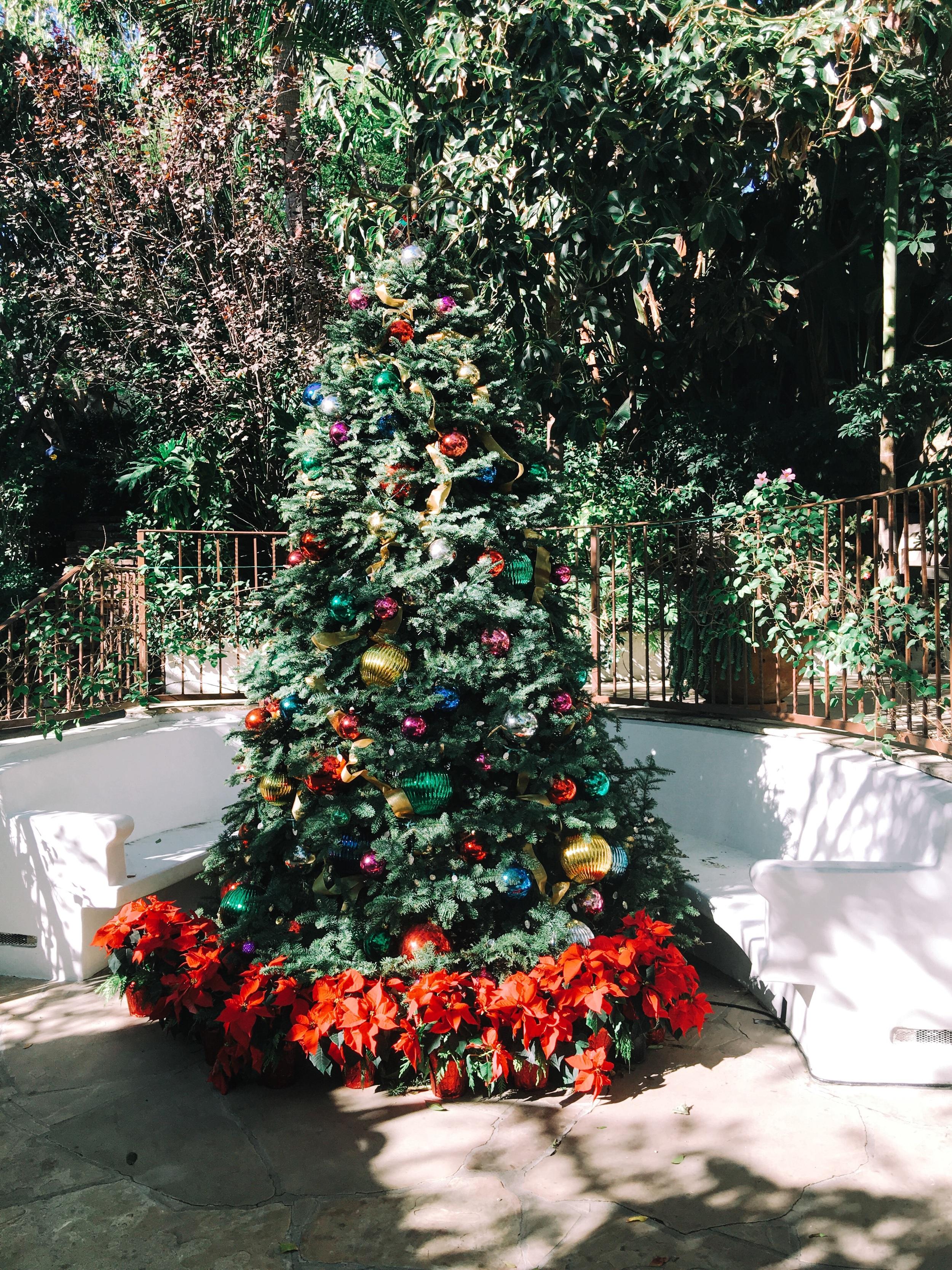 A Gratuitous Pagan Christmas Tree at the hotel