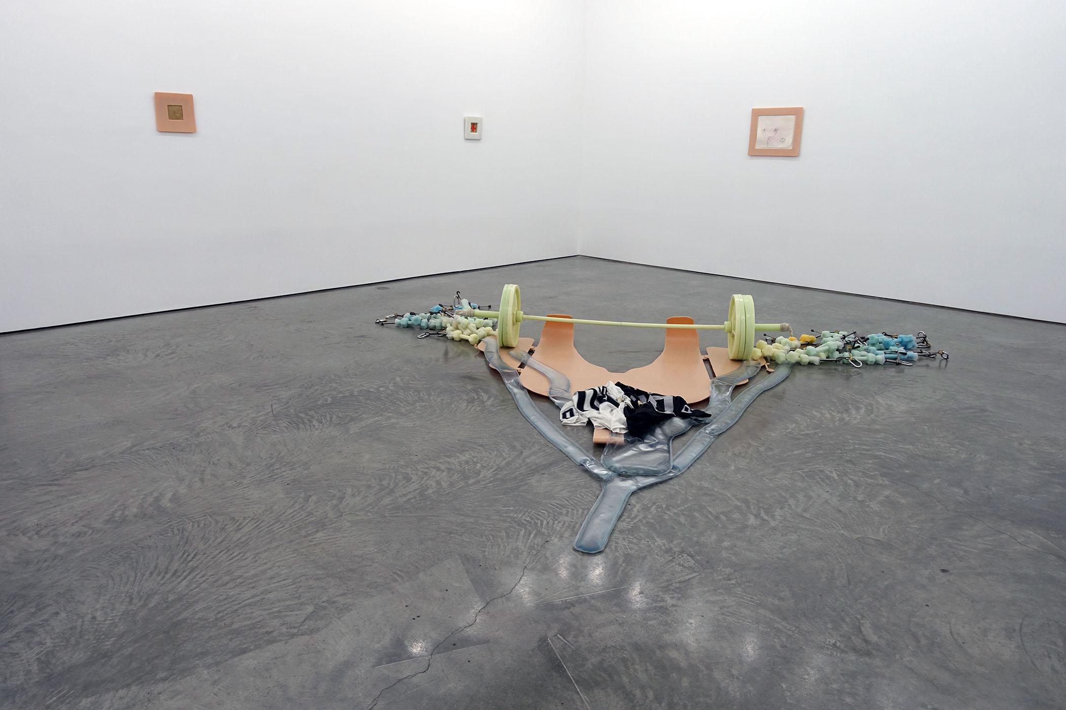 Matthew Barney  @  Gladstone Gallery , 515 west 24th Street, NY, NY