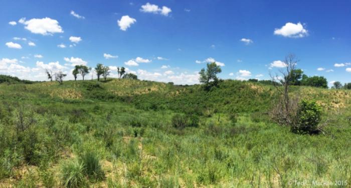 "Sand Hills State Park, in south central Kansas | a.k.a. ""Medora"" Dunes."