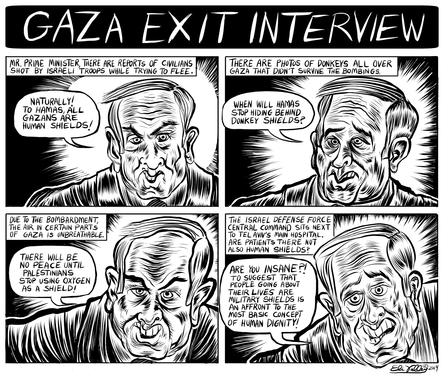 Gaza Exit Interview: Human Shields. +972 Magazine, 8/6/14