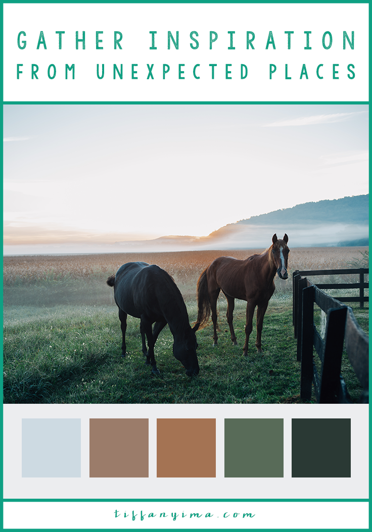 Branding through color is a powerful tool to build a recognizable image.  Why?  Color is an emotional experience. Click through to find out how to choose powerful and effective brand colors!