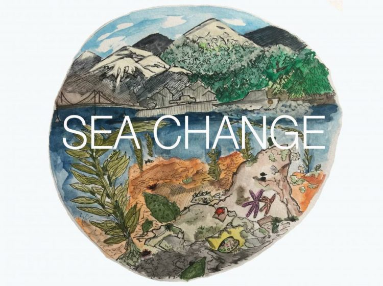Sea Change is  a five part educational audio series on climate change  created by UCSC undergraduate students who took the 2018 BIOE159 field quarter (co-taught by Kristy) and in partnership with KCAW radio in Sitka, Alaska.