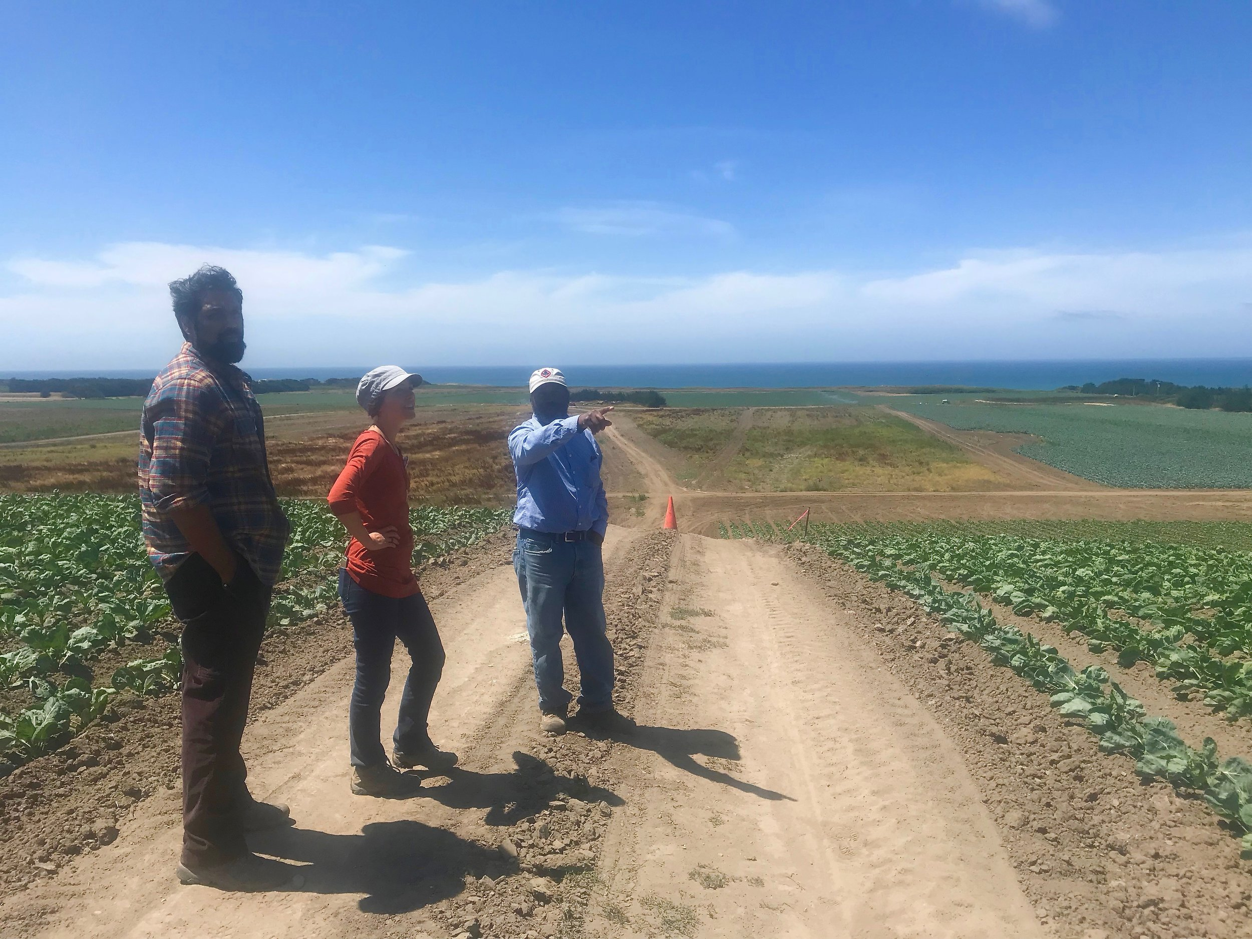 Leonard Diggs (pointing, in blue), Director of Operations at Pie Ranch, is spearheading the efforts to transform Cascade Ranch into a regenerative landscape for next-generation farmers. Here, he discusses this vision with Samir Doshi (left) and Marit Wilkerson (center) who have diverse and impressive backgrounds in conservation, community building, and policy.