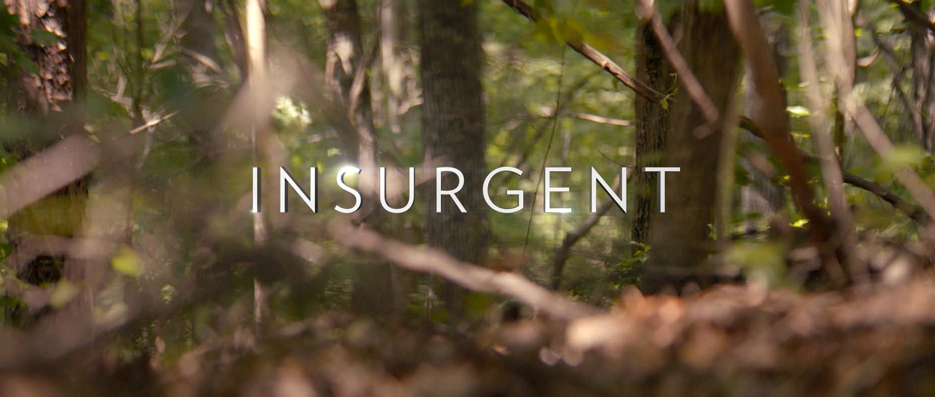 Insurgent_hologram_15.jpg