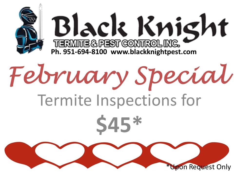 Be sure to mention the Special when you place your order.