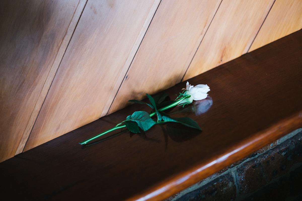 Ben-whitmore-Byron-Bay-Fig-Tree-Wedding-5138.jpg