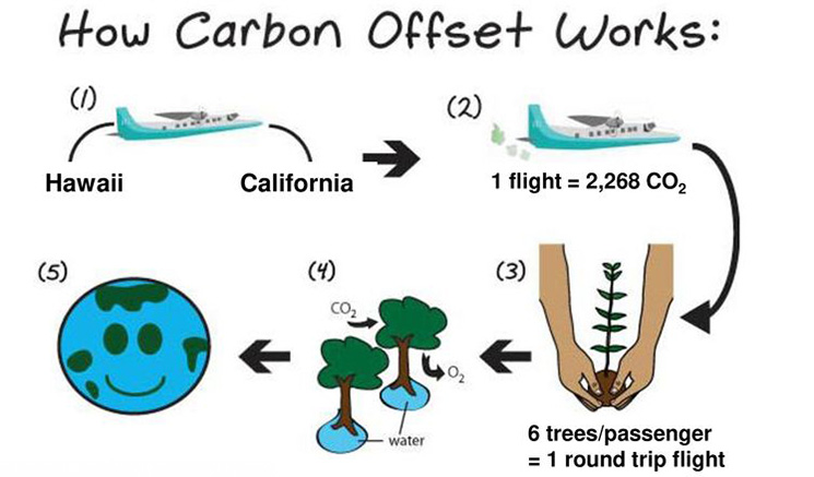 Carbon offset:  a voluntary payment to enable another entity to reduce emissions that one is unable to reduce oneself.  Emissions trading programs allow participants to buy carbon offsets.