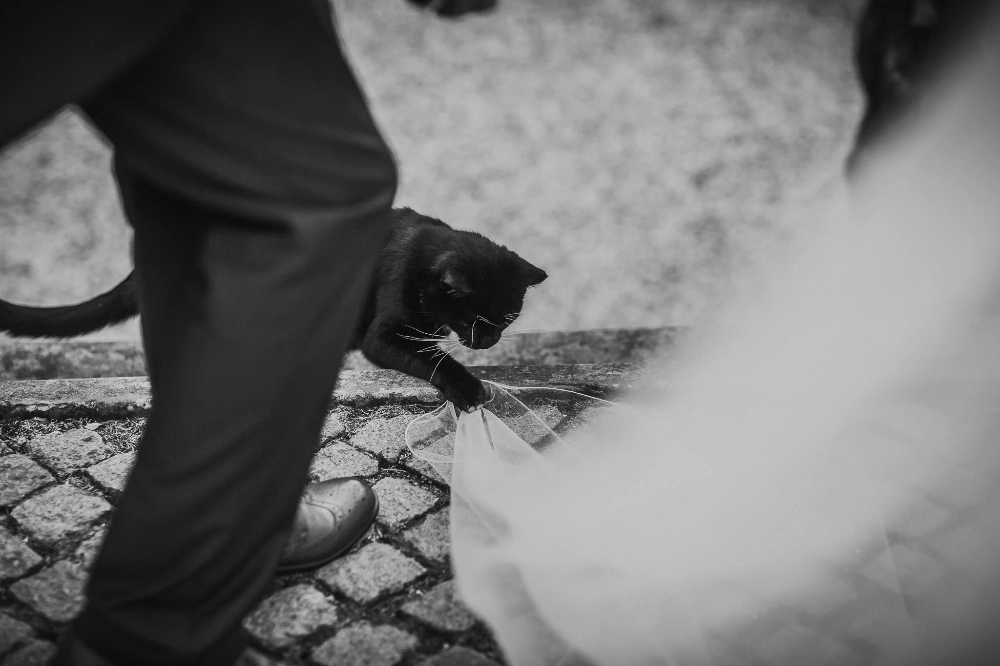 Staffordshire-Wedding-Photographer-142.jpg