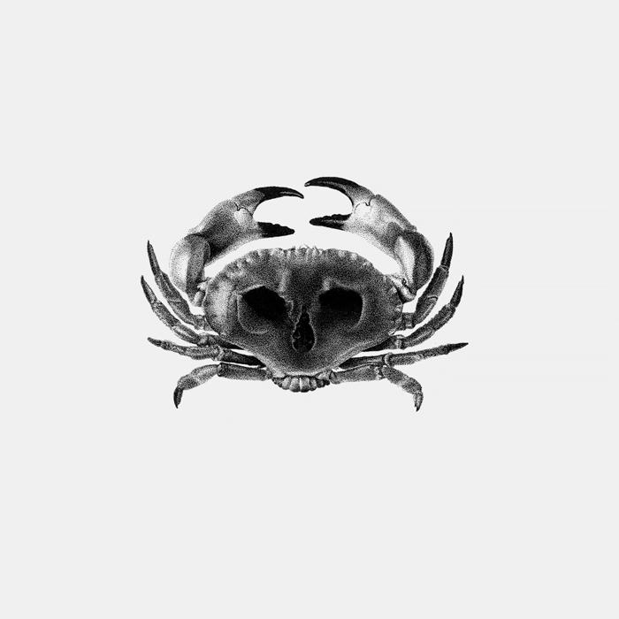 CrabSkull_FerAlcazar.jpg