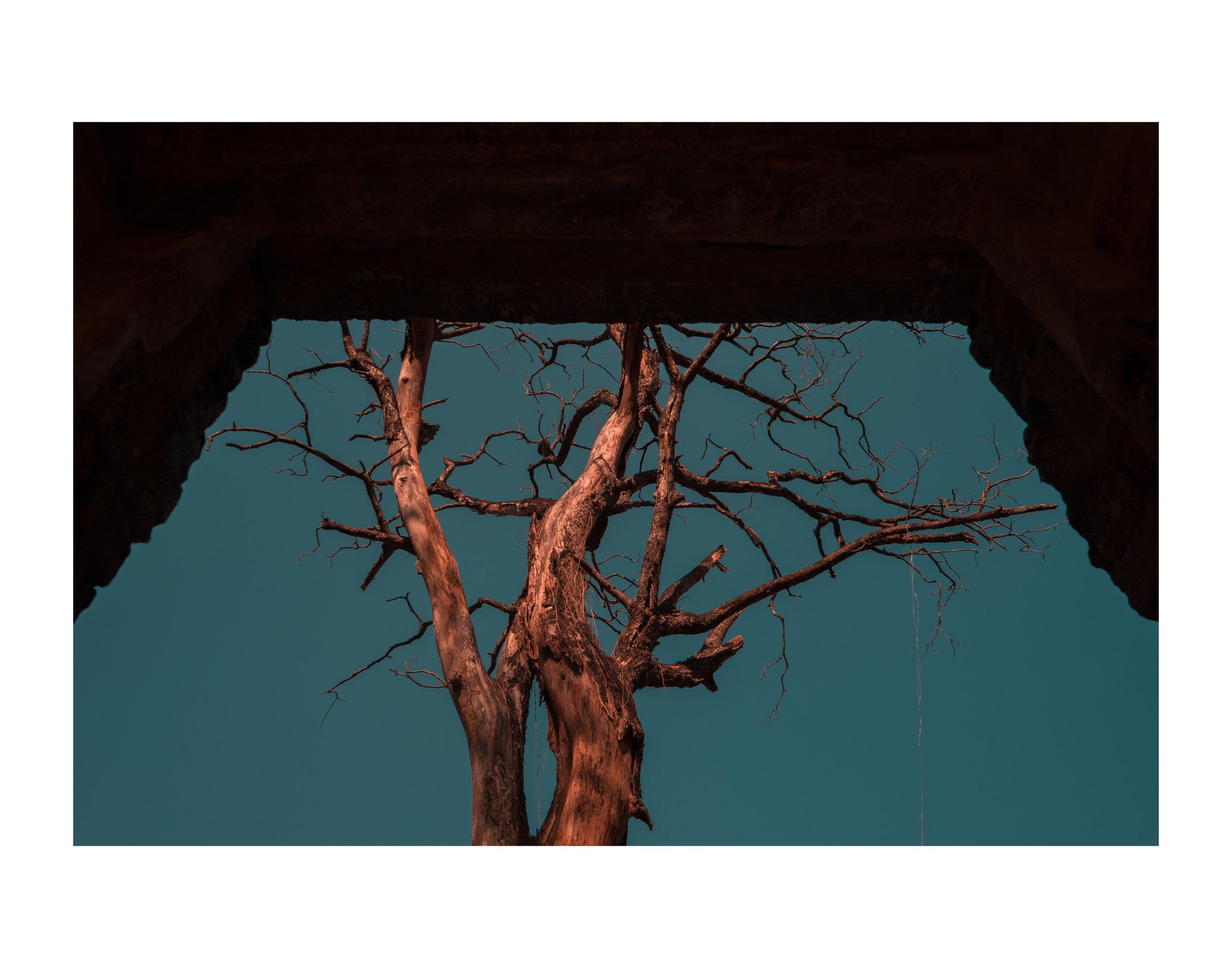 Untitled-038.jpg