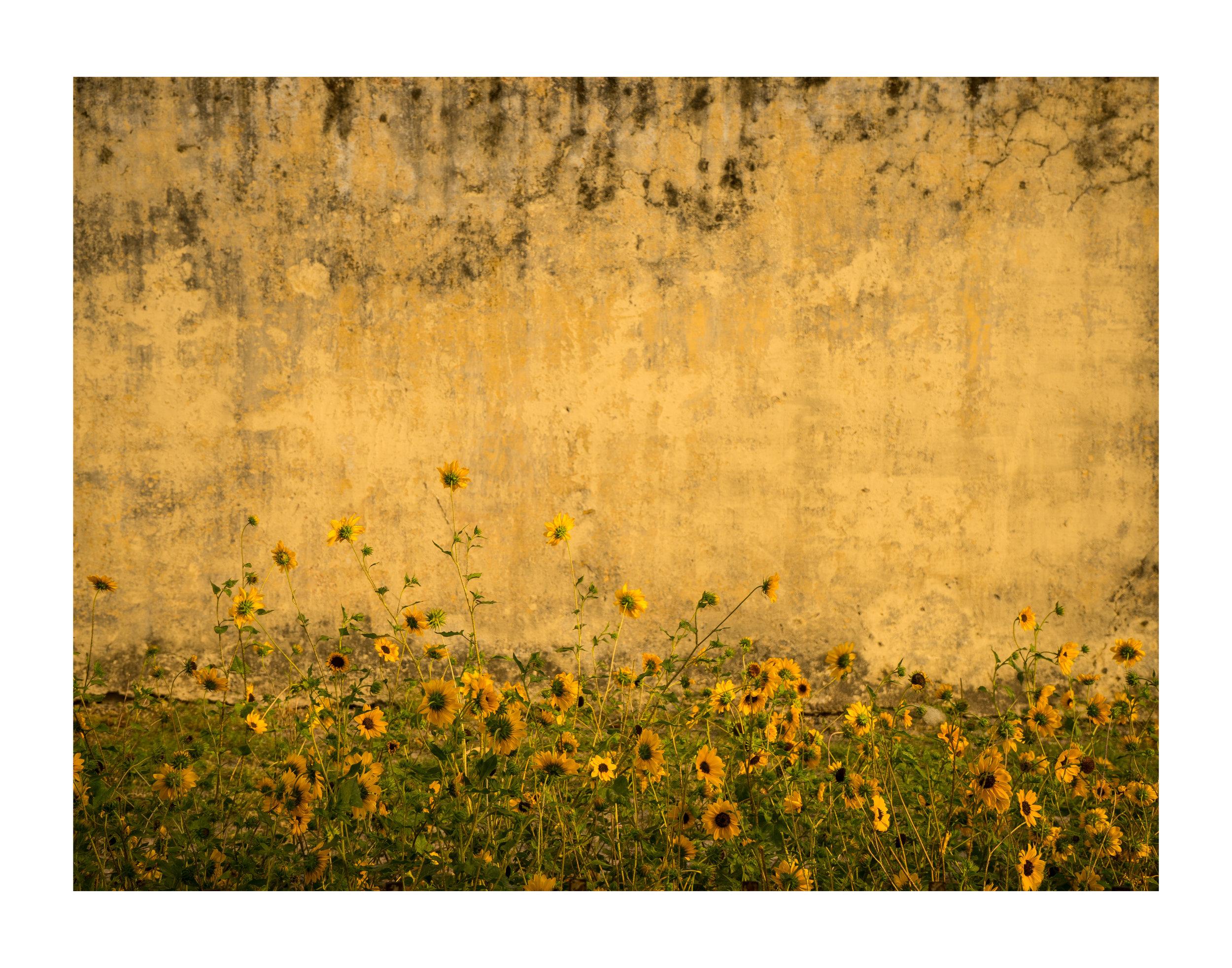 Untitled-705.jpg