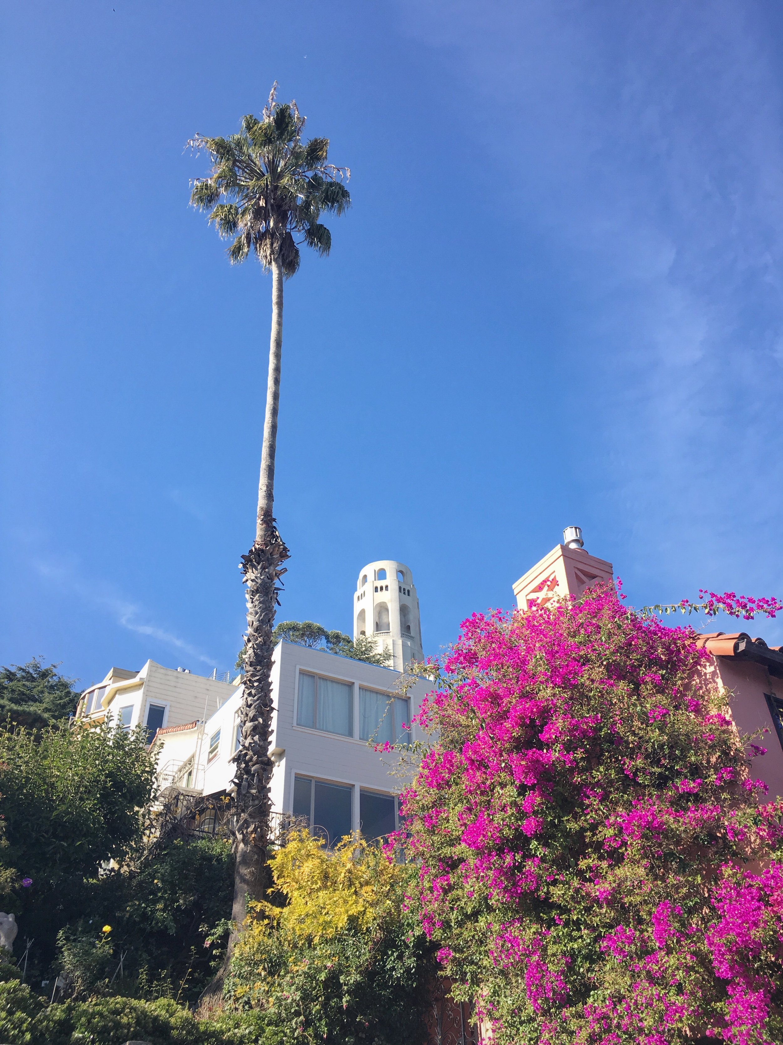 Coit Tower :: Thriving Adventure