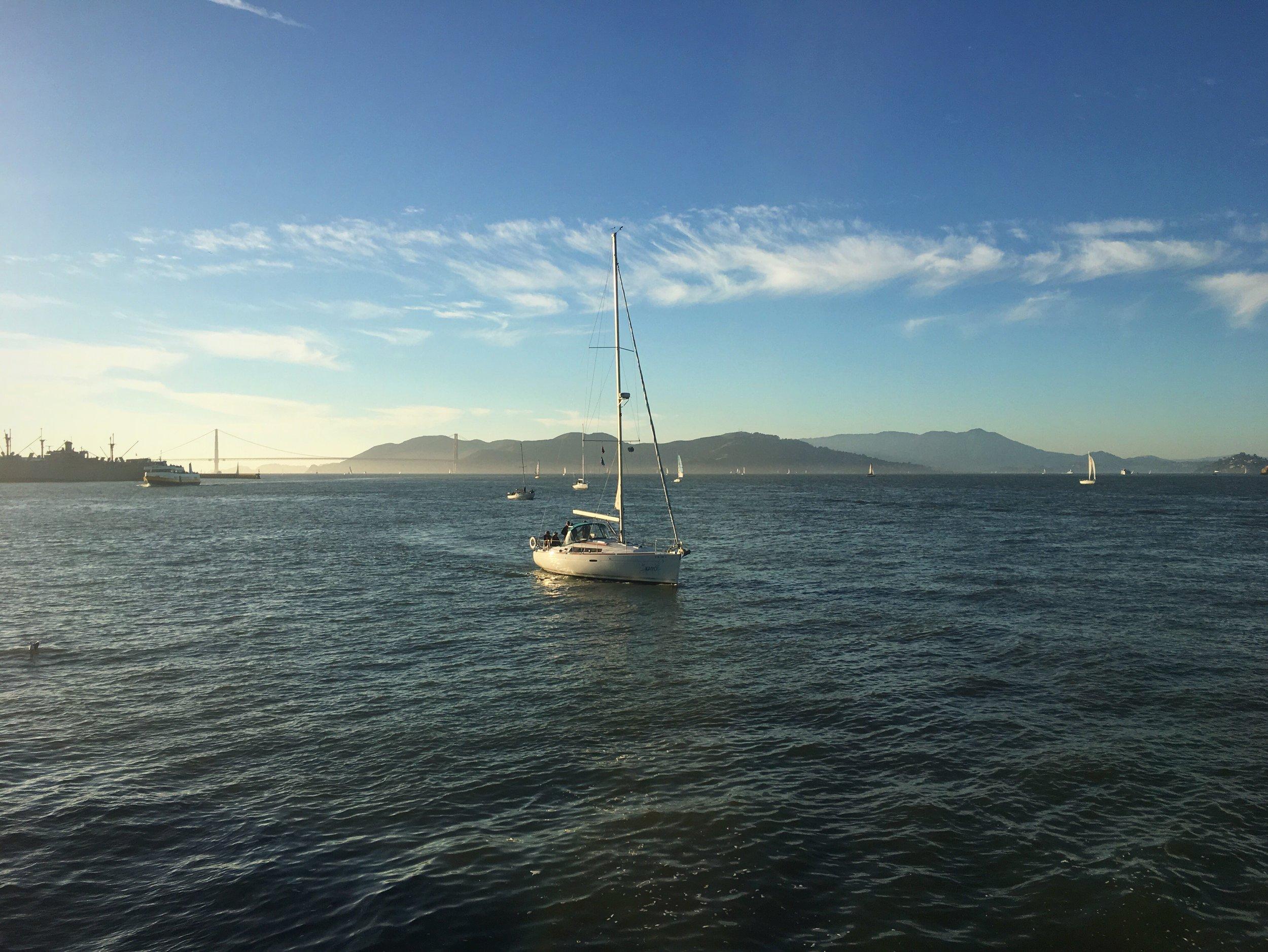 San Francisco Bay :: Thriving Adventure