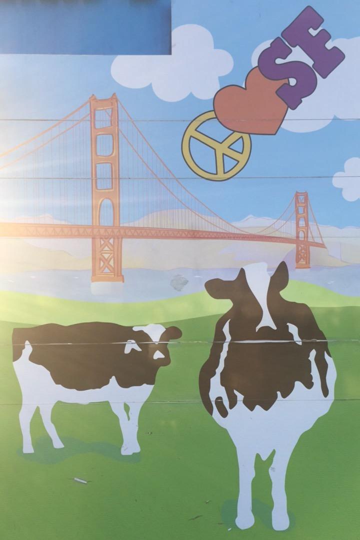 Ben & Jerry's :: Thriving Adventure