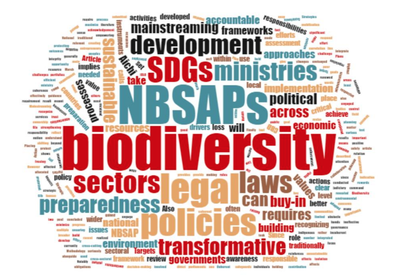 Report:Review of Post-2010 National Biodiversity Strategies and Action Plan