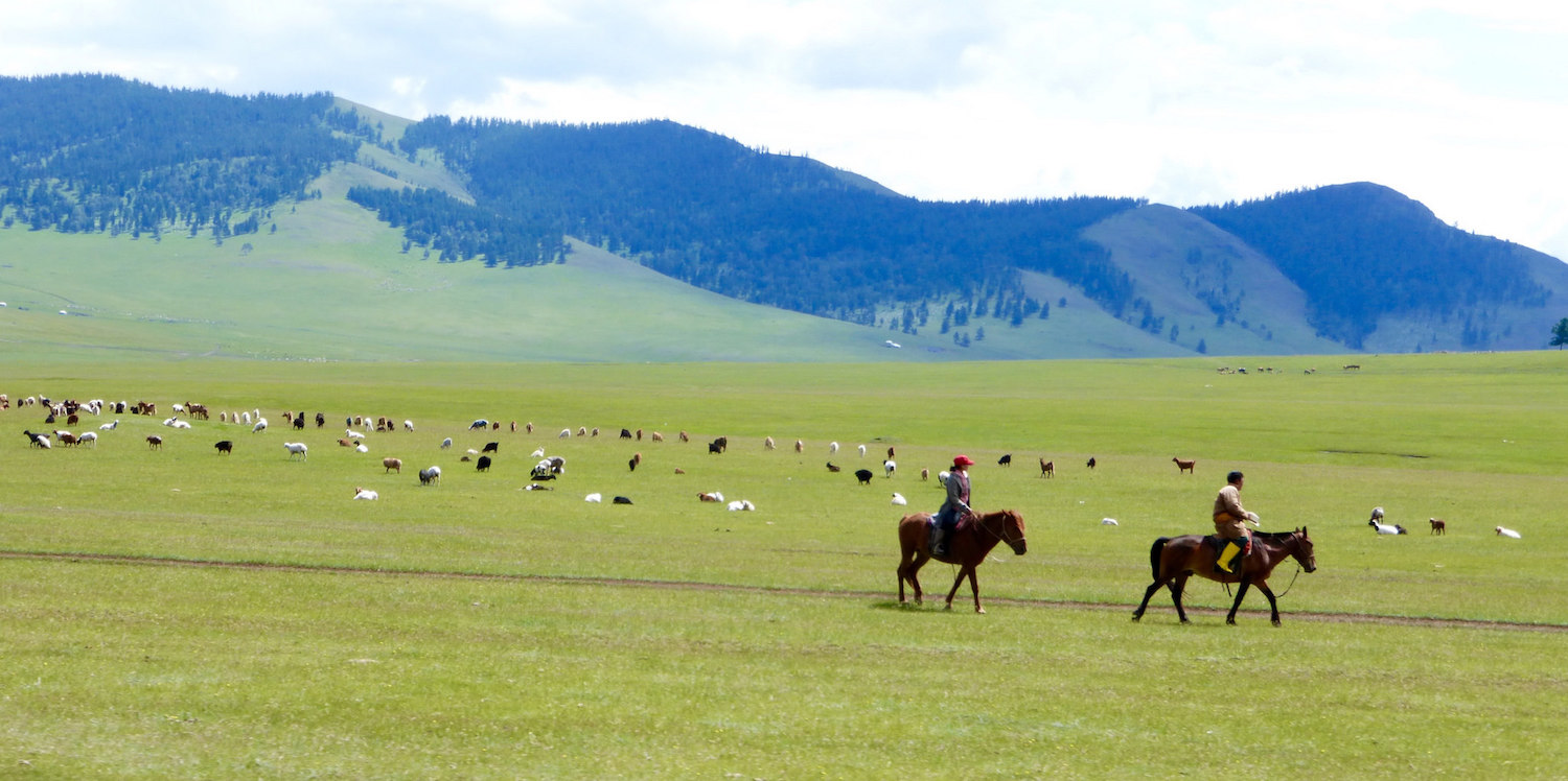 Access to justice in Mongolia