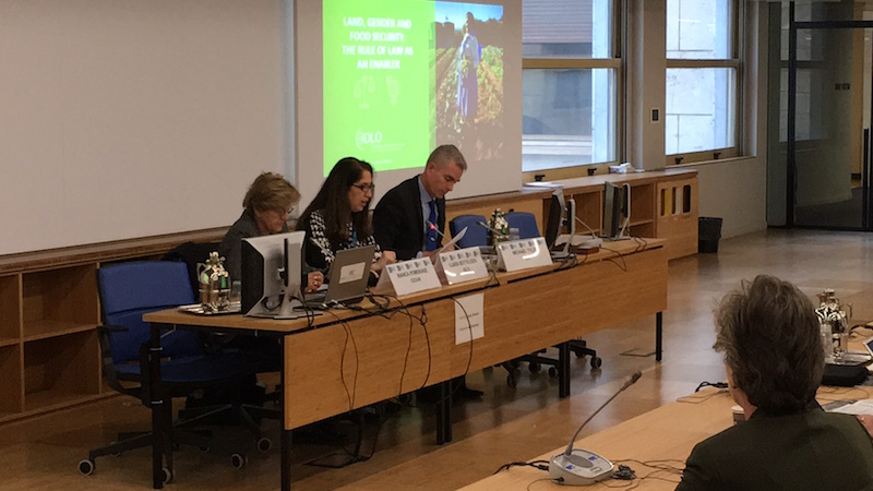 IDLO at CFS: Rule of Law Solutions for Women, Food and Land