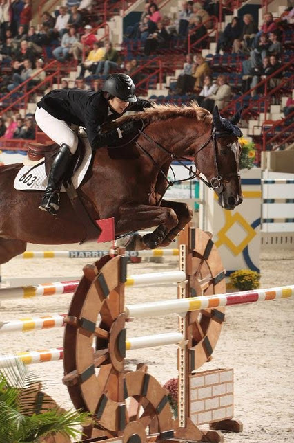 Private Tutoring for Equestrians
