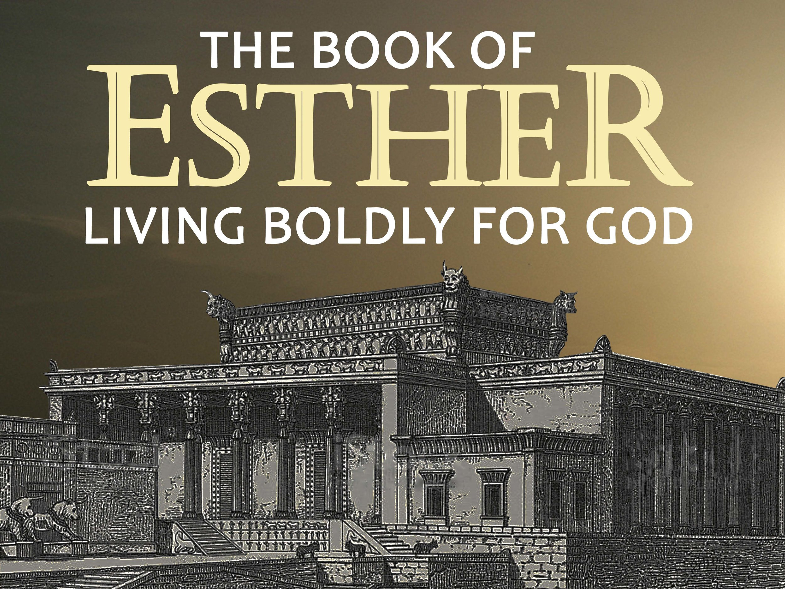 Esther was an orphaned girl, living in a land that her family had been brought to out of captivity. God chose this every day beautiful young woman to help save an entire nation, as she and her uncle lived boldly for God. -