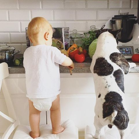 #Friendship goals! Tag your bestie in the comments below! 📷 : @olatatka_ #ACapproves #doglover #babiesanddogs #friendsday #friends