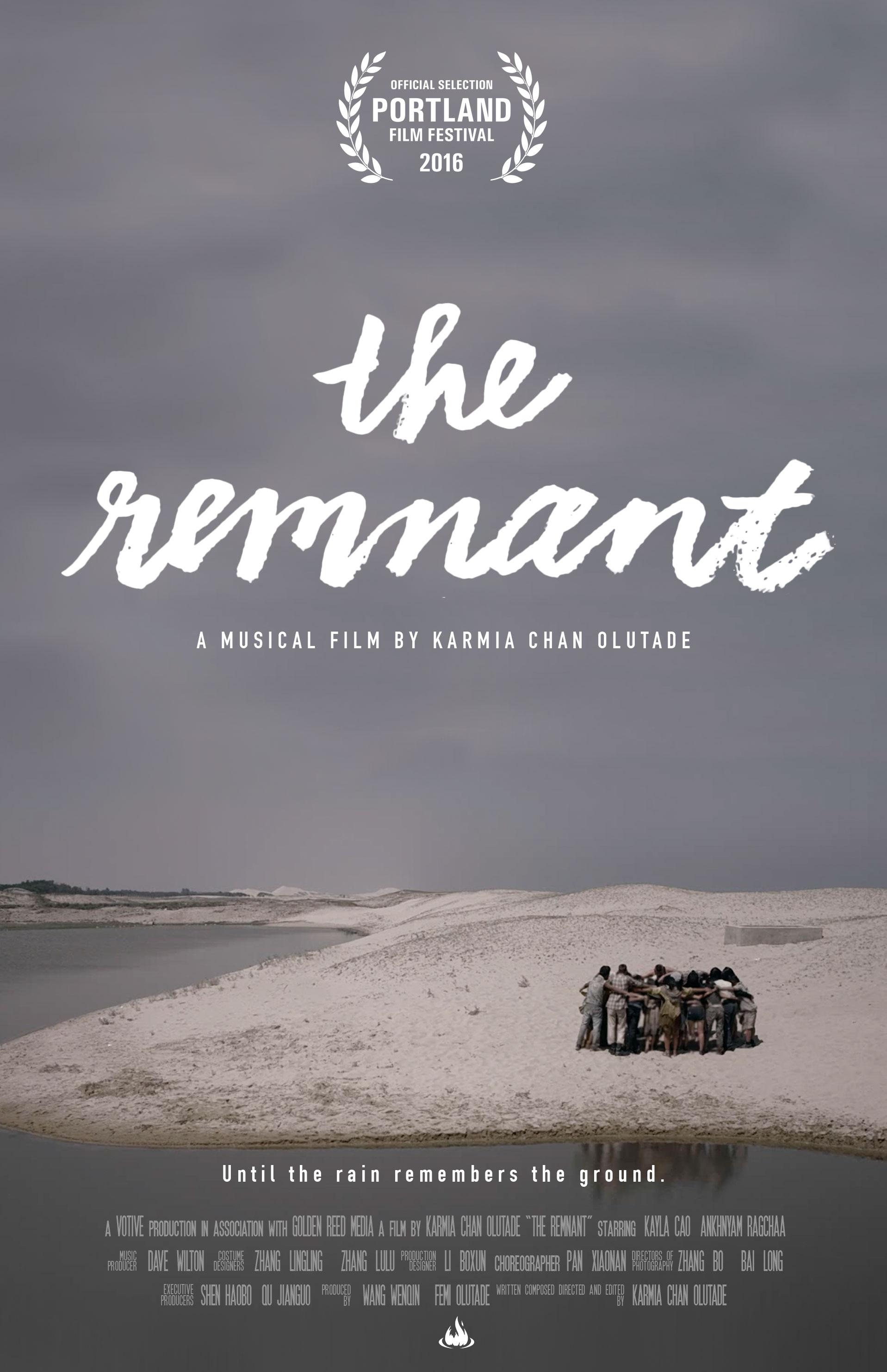 poster_the_remnant_v160818b