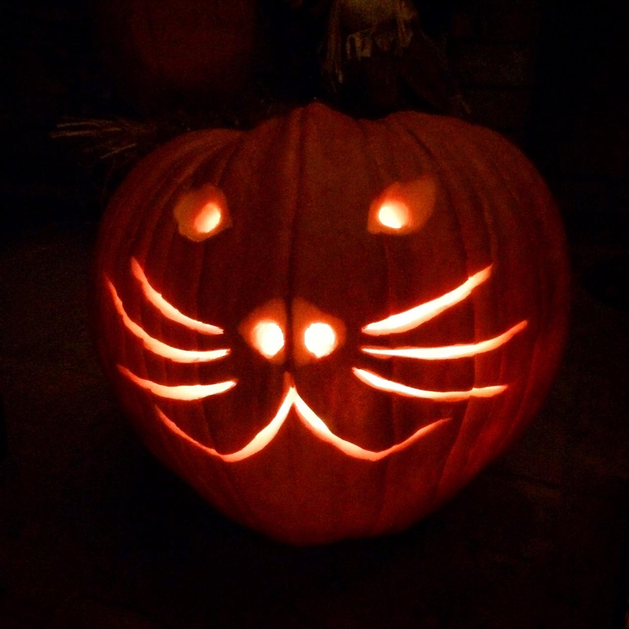 Boo! Meow.