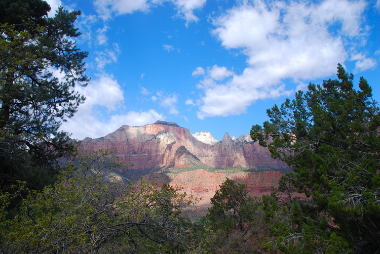 Zion National Park CE Conference - Small Animal Dermatology and  Ophthalmology October 17-20, 2019 — VetLectures