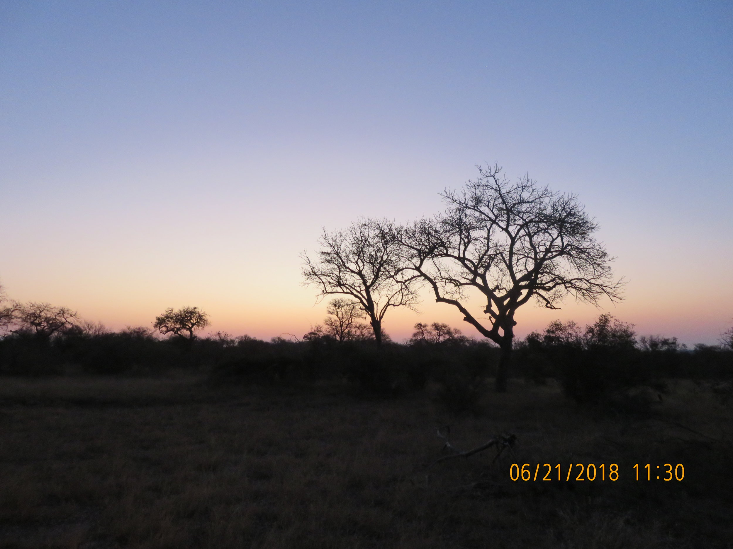 Bush Sunset.JPG