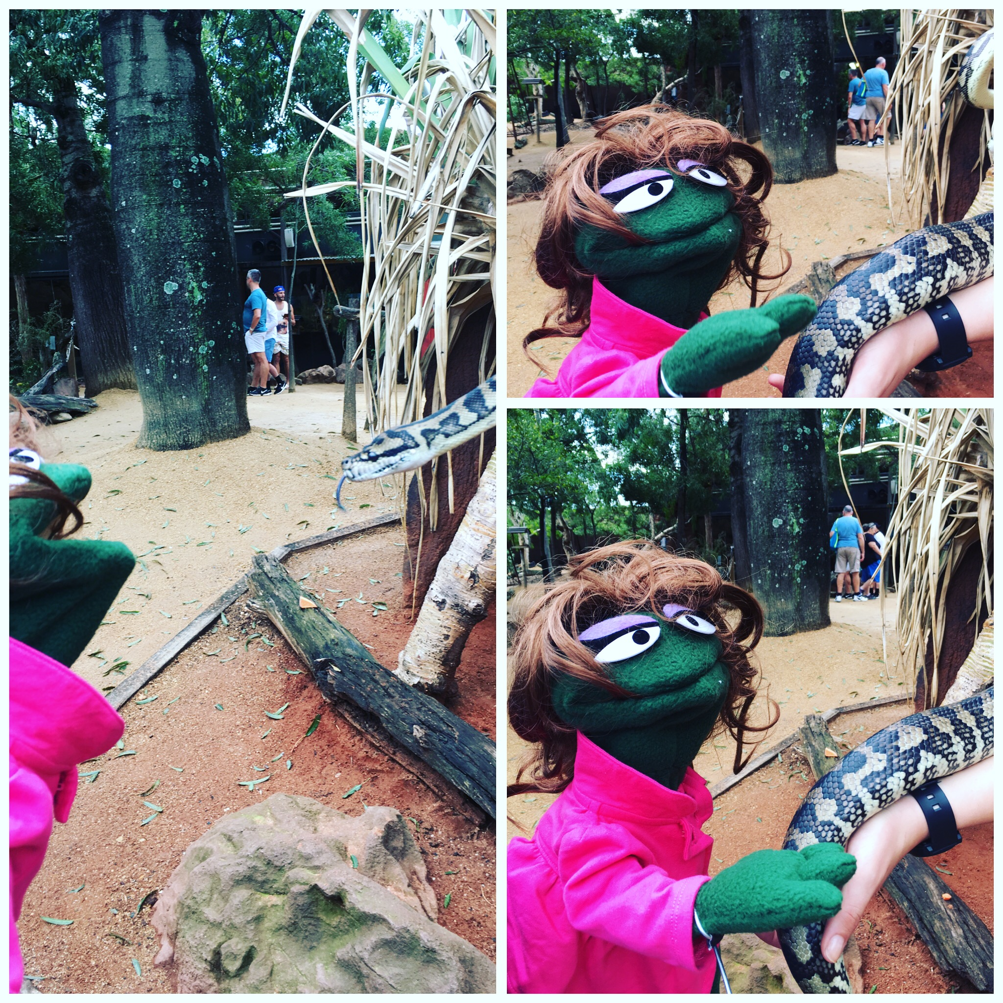 First up...Lexie is BRAVER than I. I will NOT touch a snake but of course the frog did it.