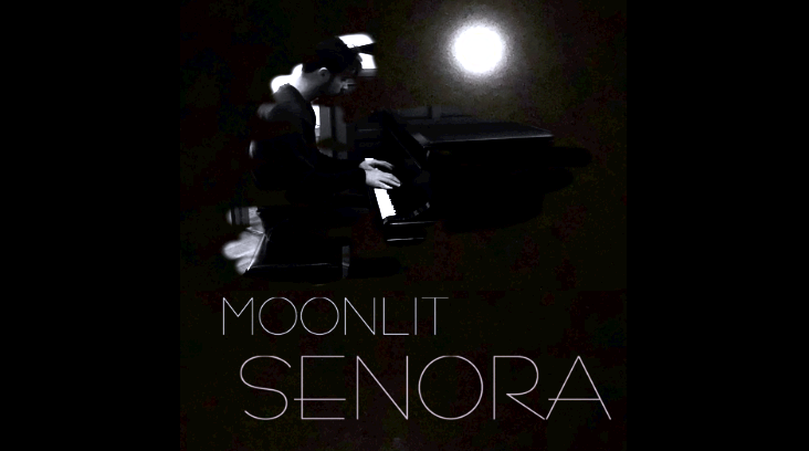 Moonlit Senora Cover Design by FA. This song is dedicated to whom I named it for.