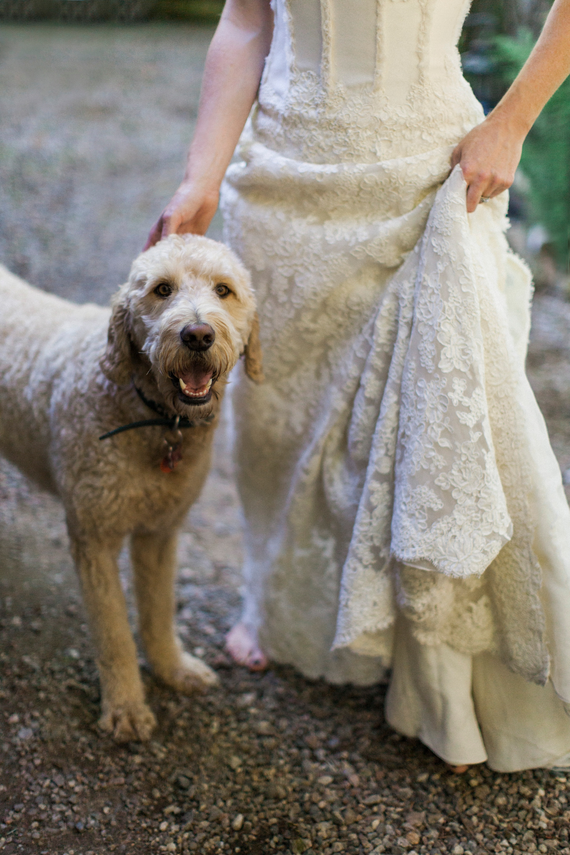 edmonton calgary alberta wedding photographer65.jpg