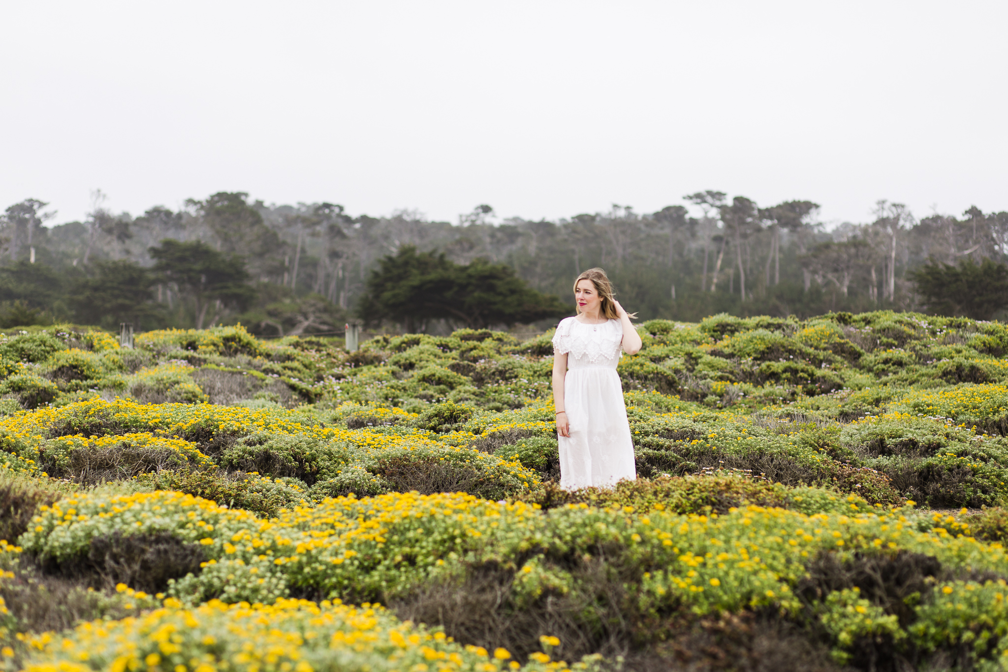 14 weeks pregnant, on 17-mile drive in Carmel, California