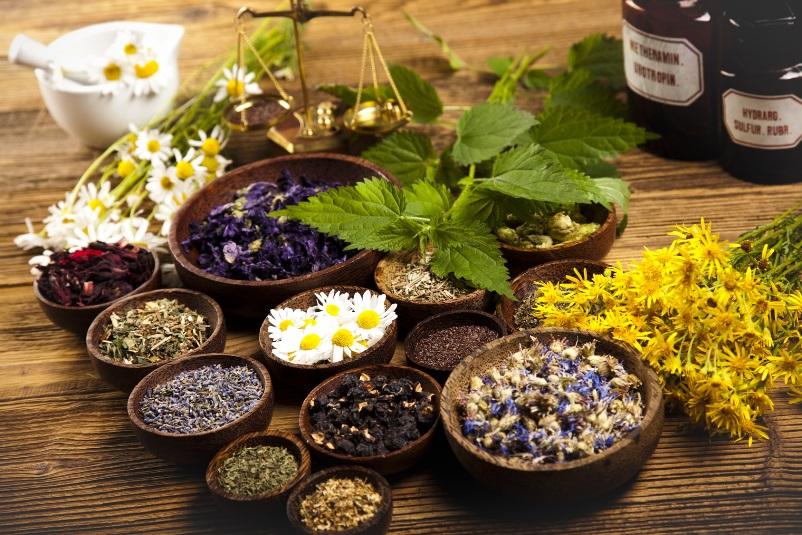 Naturopathy-by-Natural-Rhythms-Integrative-Medicine.jpg