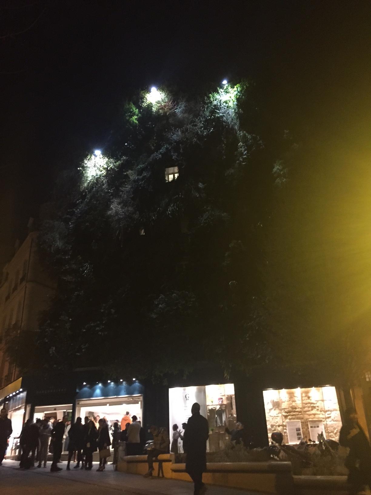 La Garconnière's facade at night | © Diana Rovanio