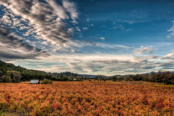 A breathtaking shot of Dry Creek Valley from photographer Steve Carver.