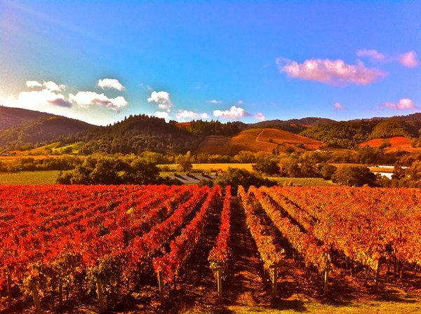 Deep colors of red and orange in this photo looking west in Dry Creek Valley.