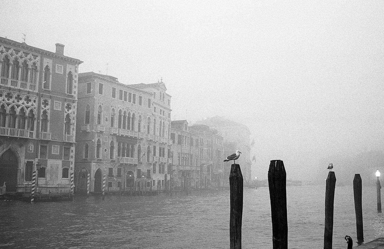 Venice-Hp5+2006.jpg