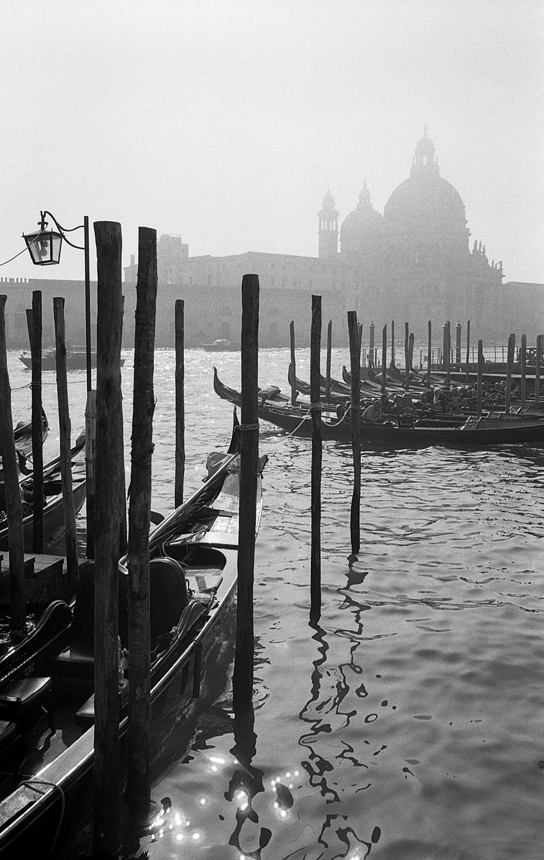 Venice-Hp5+2020-Edit.jpg